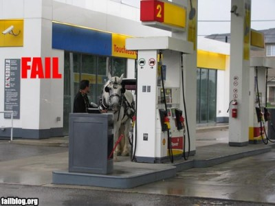 fail-owned-horse-fuel-fail